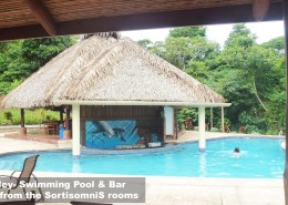 Swimming pool & Bar
